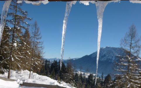 Eiszapfen Bergwald